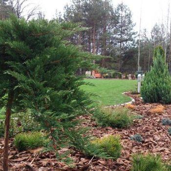 ogrody-przydomowe--3